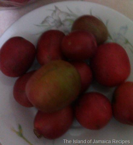 Jamaican plum