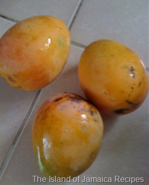 common mangoes