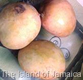 Julie mangoes