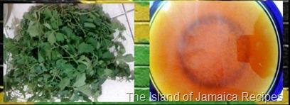 How To Boil Cerasee Tea Jamaican Herbal Bush Tea